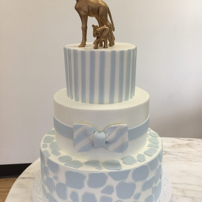 Dusty Blue and White Baby Shower